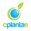 CPlantae